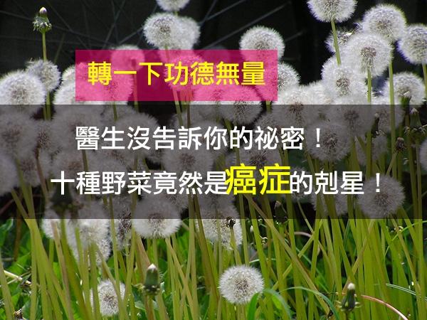 生活驚奇 - Magazine cover